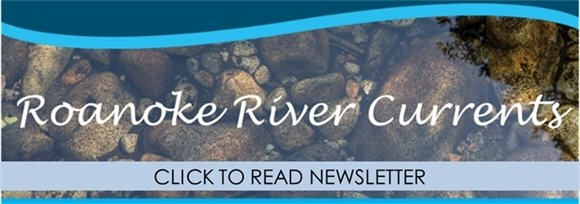 Roanoke Stormwater Newsletter - Click to Read Newsletter