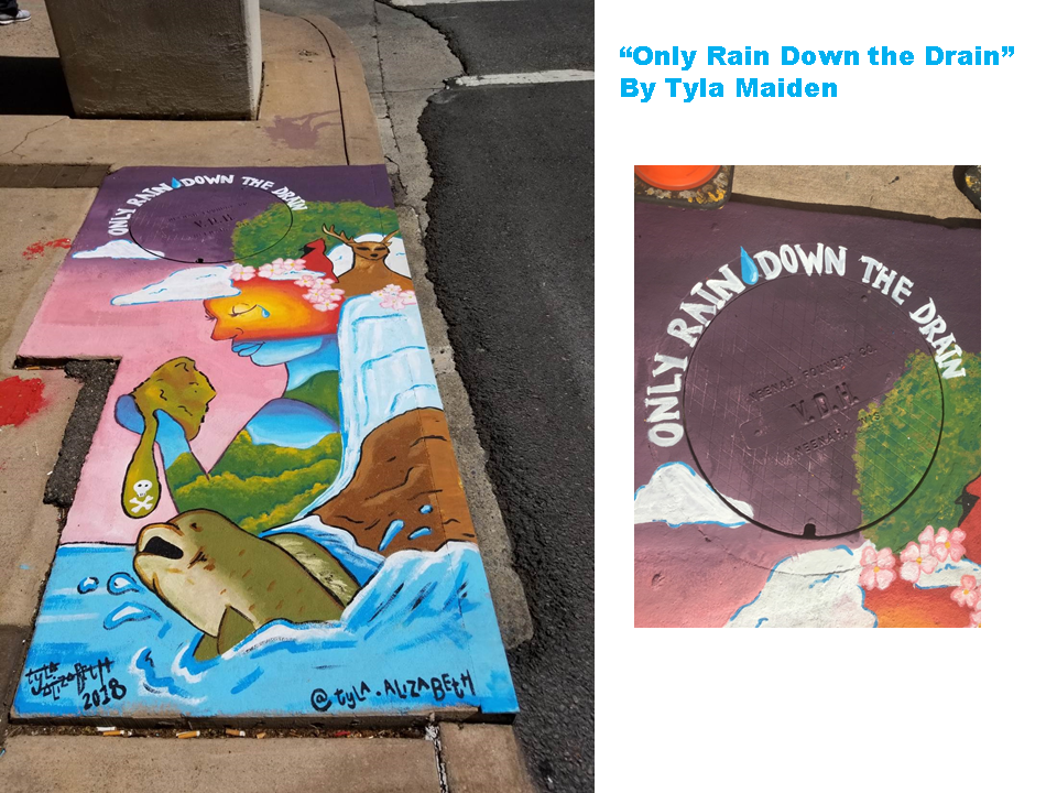 Only Rain Down the Drain by Tyla Maiden