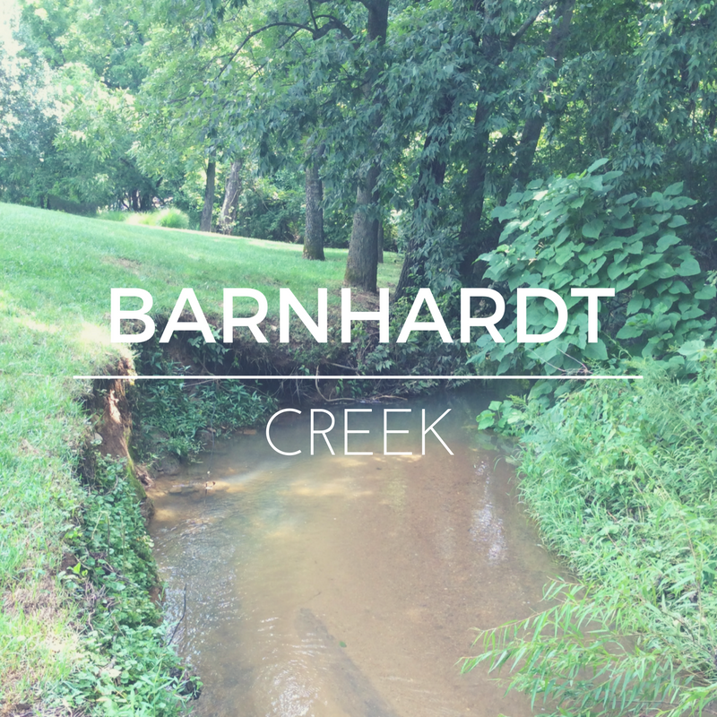 Barnhardt Creek