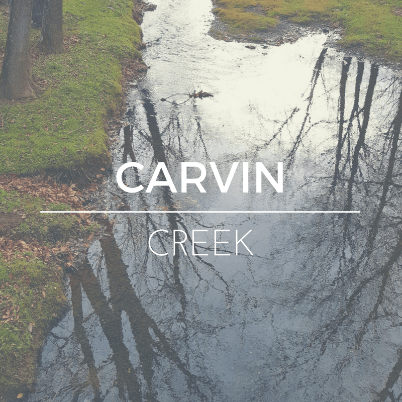 Carvin Creek