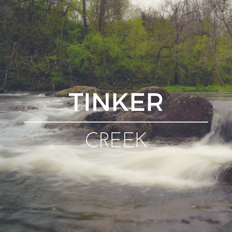 Tinker Creek