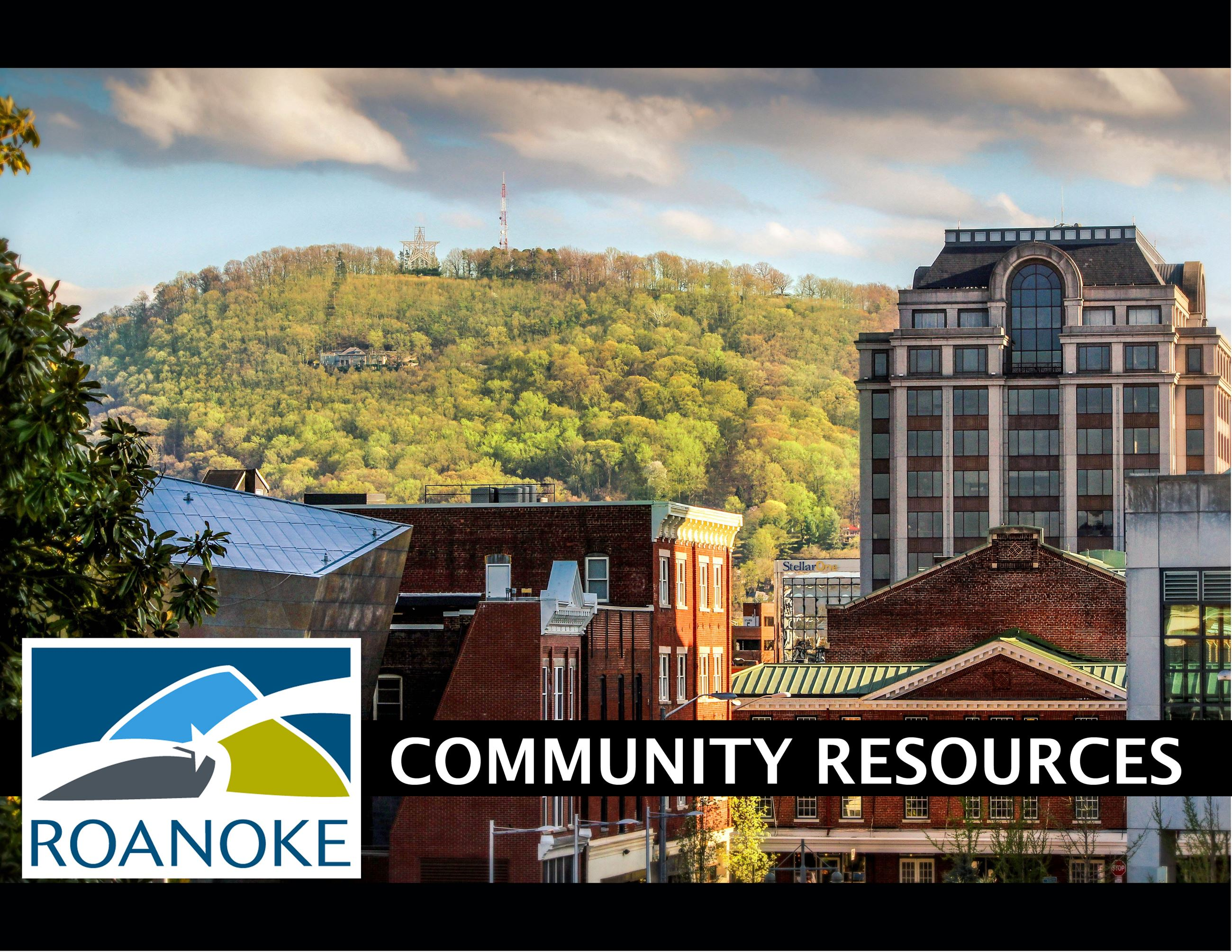 Photo of Mill Mountain City of Roanoke Community Resources graphic