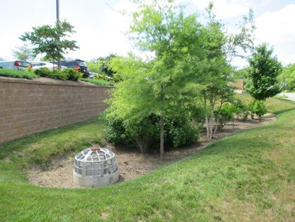 Bioretention Basin 2